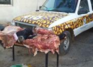 FEDERAL:  La brigada de prevensión de delitos  rurales difundió detalles de operativos realizados