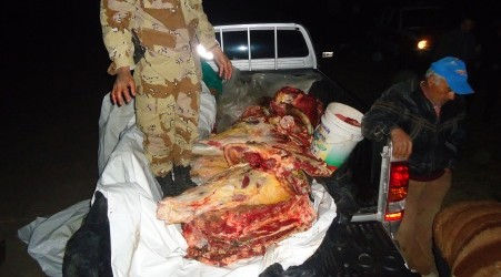 Quiso evitar un operativo en la zona de Sauce de Luna: Interceptaron una camioneta cargada con 200 kg de carne vacuna