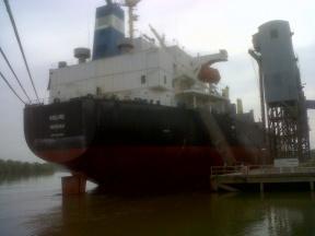 Se embarcarán 16.500 toneladas: Partirá una nueva carga de soja desde Diamante con destino a Turquía