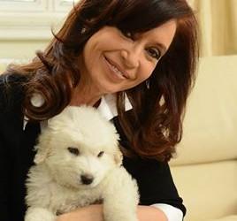 """EN OLIVOS: Cristina volvió y grabó un mensaje: """"Les quiero agradecer a todos por su preocupación"""""""