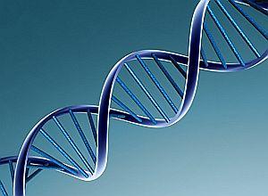 """Descubrimiento publicado en """"Science"""": Hallan segundo código genético en el ADN"""