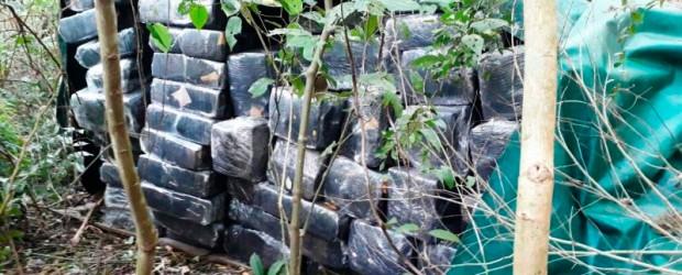 """Detuvieron a dos personas: Incautaron más de 3,5 toneladas de marihuana en estancia de """"turismo rural"""""""