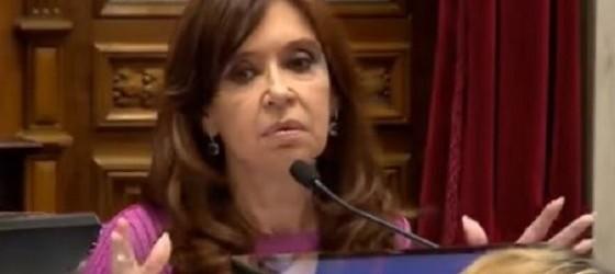 """La brutal chicana de Cristina Kirchner a Michetti: """"Yaguareté mimoso"""""""