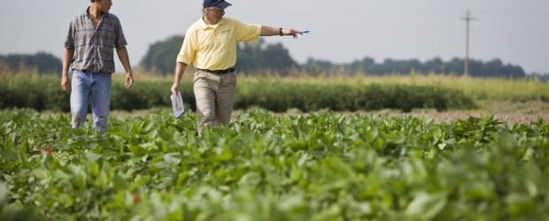 Oficializaron la suba de retenciones con un máximo del 30% para la soja