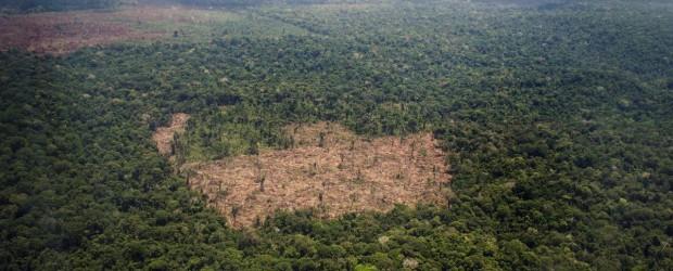 Una nueva amenaza se ciñe sobre la Amazonia