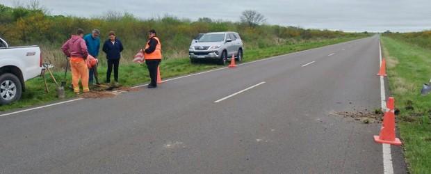 Vialidad realiza mediciones en la ruta provincial Nº 6 para definir su reparación
