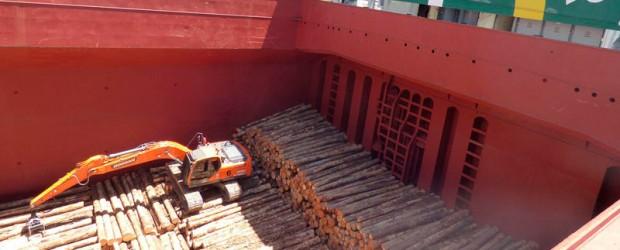 Tras completar la carga: Partió el buque que lleva 19.000 toneladas de madera desde Entre Ríos a China