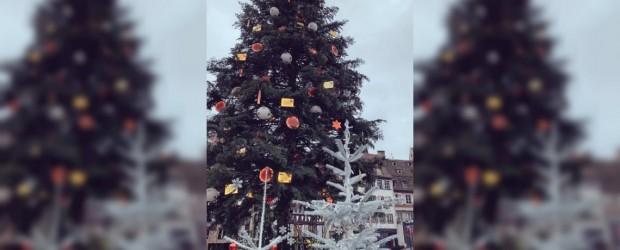 """FRANCIA:  Estrasburgo, la """"capital de la Navidad"""", un blanco recurrente del terrorismo"""