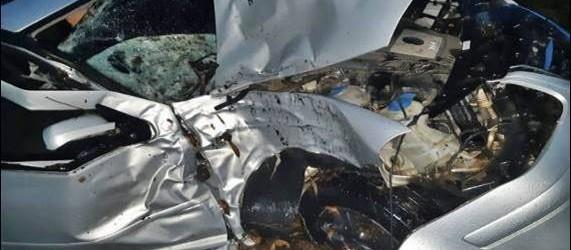 ACCIDENTE: Viajaba desde Federal hacia Concordia y terminó impactando contra un árbol