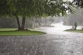 Cantidad de lluvia caída en el departamento Federal