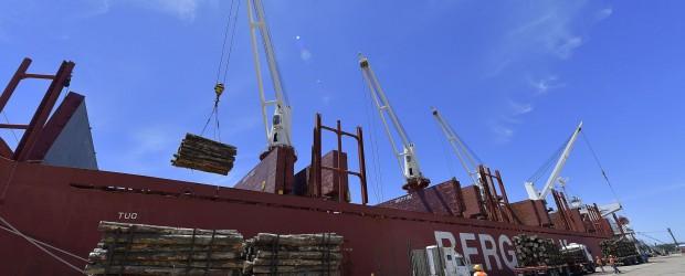 Desde Concepción del Uruguay, la provincia exporta 20.000 toneladas de madera a China