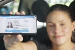 Qué hacer para tener el nuevo carnet de conducir digital en el celular