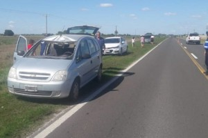 Ala altura de Cerrito: Se les atravesó un ciervo en ruta 12 y una familia de Federal fue hospitalizada